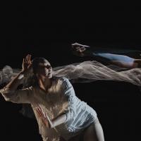 Campbelltown Art Centre Announces Program of Dance and Art as Part of Sydney Festival 2021 Photo