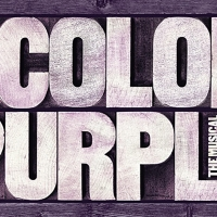 Indiana Performing Arts Theatre Presents THE COLOR PURPLE Photo