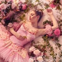 Royal New Zealand Ballet Presents THE SLEEPING BEAUTY Photo