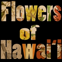 Photo Flash: Meet the Cast of FLOWERS OF HAWAI'I at UHM Kennedy Theatre Photos