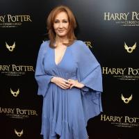 Robert Glenister & Natasha O'Keeffe Join J.K. Rowling Drama STRIKE