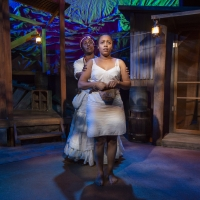 Photo Flash: Take a Look at Photos From Raven Theatre's Production of HOODOO LOVE Photo
