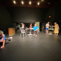 North Star Theater Company Presents FUDDY MEERS Photo