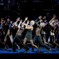 CHICAGO Announces VIVA BROADWAY! Night Set For This Month Photo