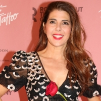 Marisa Tomei To Talk THE ROSE TATTOO On NY1 On Stage Photo