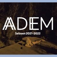 Antwerp Symphony Orchestra Presents LEZING 1: DE ADEMREVOLUTIE - VIND RUST TERWIJL JE Photo