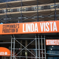 Up On The Marquee: Second Stage Theater's LINDA VISTA Photo