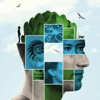 Traverse Theatre Announces Full Cast And Creative Team For DONNY'S BRAIN