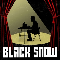 Once-Banned Russian Farce BLACK SNOW Comes to UofSC's Center for Performance Experime Photo