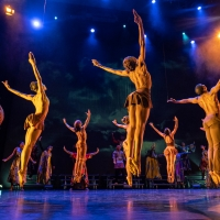 A 'Deeply Rooted Evening For Chicago's Healing' to Feature Joyous GOSHEN PREVIEW Photo