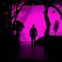 BWW Review: THE LAST ROMANCE at Stage Left Productions