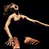 SPLIT to be Presented by SF Dance Company FACT/SF This Fall Photo