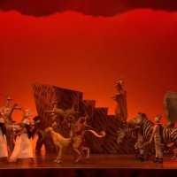 VIDEO: EVERYBODY DANCE NOW! A Look Back at 'Circle of Life' From THE LION KING Photo