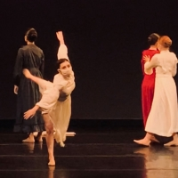 Baton Rouge Ballet Theatre Presents a Virtual Performance Available to Purchase Photo