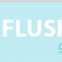 Flushing Town Hall Announces 7th Season Of Global Mashups Photo