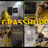 Buntport Theater Company Announces THE GRASSHOPPERS