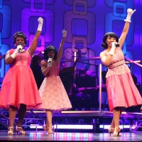 Review: BEEHIVE: THE '60's MUSICAL by Paper Mill Playhouse - A Vibrant, Entertaining  Photo