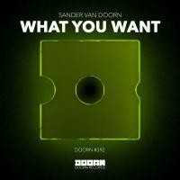 Sander van Doorn Releases New Driving Hit Single 'What You Want' Photo