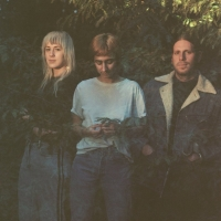 Sour Widows Share Video for New Single 'Bathroom Stall' Photo