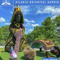 Alice's Wonderland Returns, Bigger, Better Than Ever at Atlanta Botanical Garden Photo