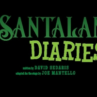 THE SANTALAND DIARIES At Virginia Stage Company! Photo