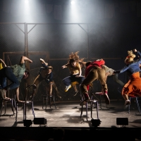 BWW Review: WEST SIDE STORY, Curve Leicester Photo
