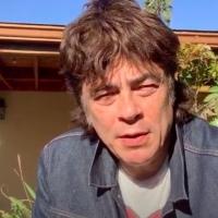 VIDEO: Benicio del Toro Announces Today's AFI Movie Club Pick ROCKY Photo