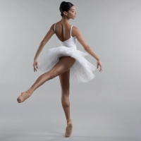 BWW Review: THE SWAN, Birmingham Royal Ballet Home From Home Photo