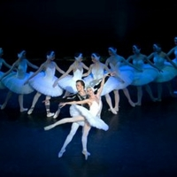 SWAN LAKE Will Glide Into Chester This January