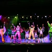 BWW Review: Have The Time of Your Life with MAMMA MIA! at Broadway Palm Photo