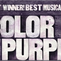 Society for the Performing Arts Presents THE COLOR PURPLE