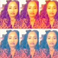 VIDEO: FREESTYLE LOVE SUPREME's Aneesa Folds Takes Over Instagram! Photo