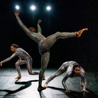 Arts On Site Announces October Performances Photo