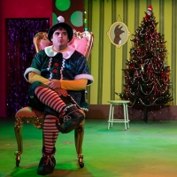 BWW Review: THE SANTALAND DIARIES at Playhouse On Park Photo