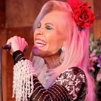 Barb Bailey to Present HOLLYWOOD - OUT OF THE BOX at Don't Tell Mama Photo