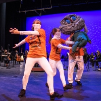 Palm Beach Symphony Offers Free Virtual Concert To Families Photo