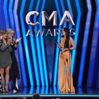 Luke Combs and Kacey Musgraves Win Big at the CMA AWARDS - See Full Winners List!