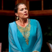BWW Interview: Roxane Carrasco of MARGIN OF ERROR at The Roustabouts Theatre Co Photo