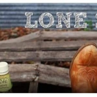 BWW Review: LONE STAR at Gettysburg Community Theatre Photo