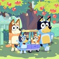 Disney Channel Announces Season 2 Premiere Date for BLUEY Photo