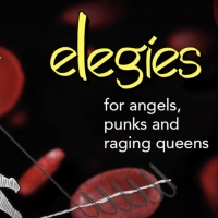 VIDEO: Watch the Cast of ELEGIES FOR ANGELS, PUNKS, AND RAGING QUEENS on Stars in the Hous Photo