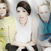 BWW Review: THE ANATOMY OF A SUICIDE at Metro Arts Photo