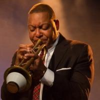 Summer Camargo, Giveton Gelin, Tatum Greenblatt & Anthony Hervey to Join Jazz at Lincoln C Photo