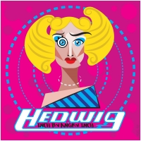 BWW Interview: Breaking Down the Breakdown with Hedwig: Inch by Angry Inch Host Jonfen Parker