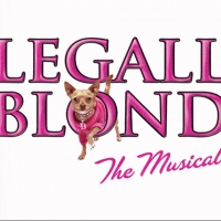 AAA Cercasi Cast Italiano Per LEGALLY BLONDE il Musical! Photo