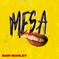 Bam Marley Releases Debut Project M.E.S.A. PART 1 Photo