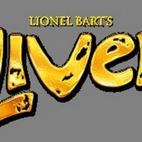 The Marriott Theatre Announces Casting For OLIVER! Photo