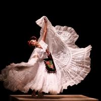 """BALLET FOLKL�""""RICO DE MEXICO DE AMALIA HERNÁNDEZ llega al Palacio de Bellas Artes Photo"""