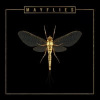The Bergamot's New Album 'Mayflies' Out Now