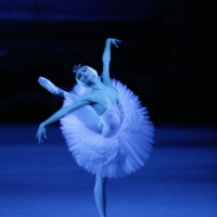SWAN LAKE to be Broadcast at The Ridgefield Playhouse Photo